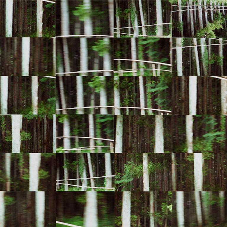 Simo Neri - Moving lines I - 1