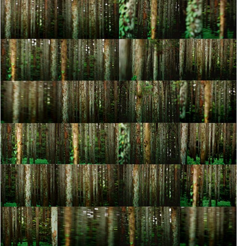 Simo Neri - Moving Lines II - 1