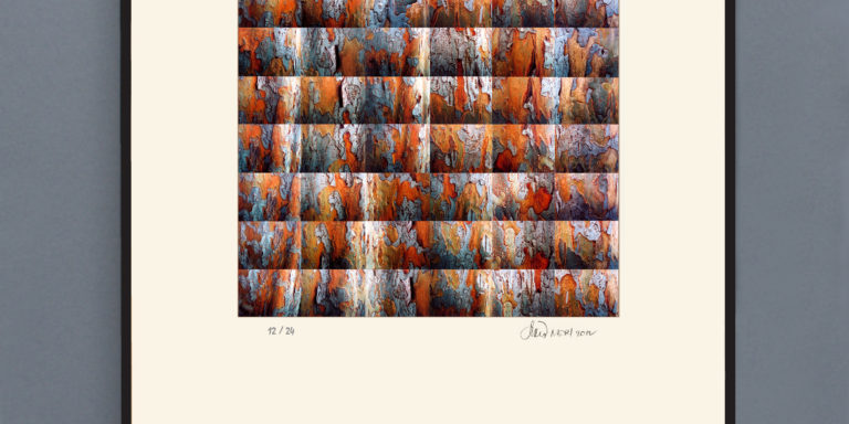Orange_Bark_print_OK